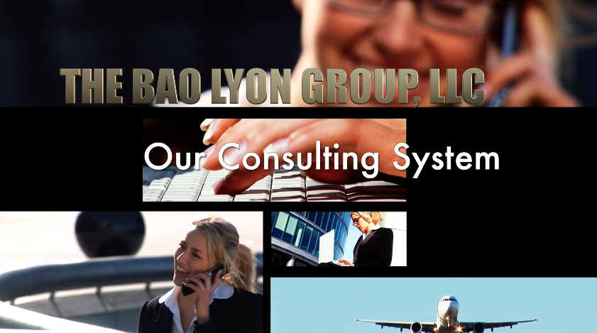 Our consulting system